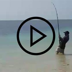 Rio Fishing